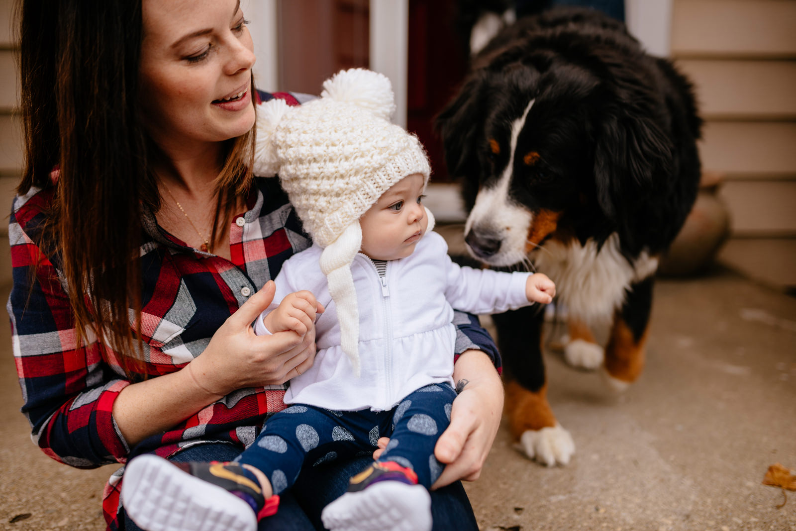 holiday family photos baby with dog
