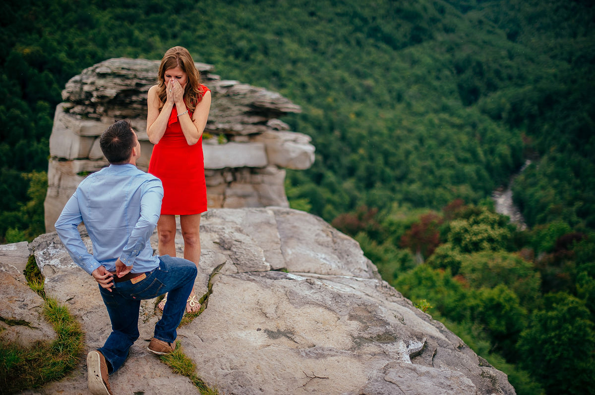 overlook proposal photography by the oberports
