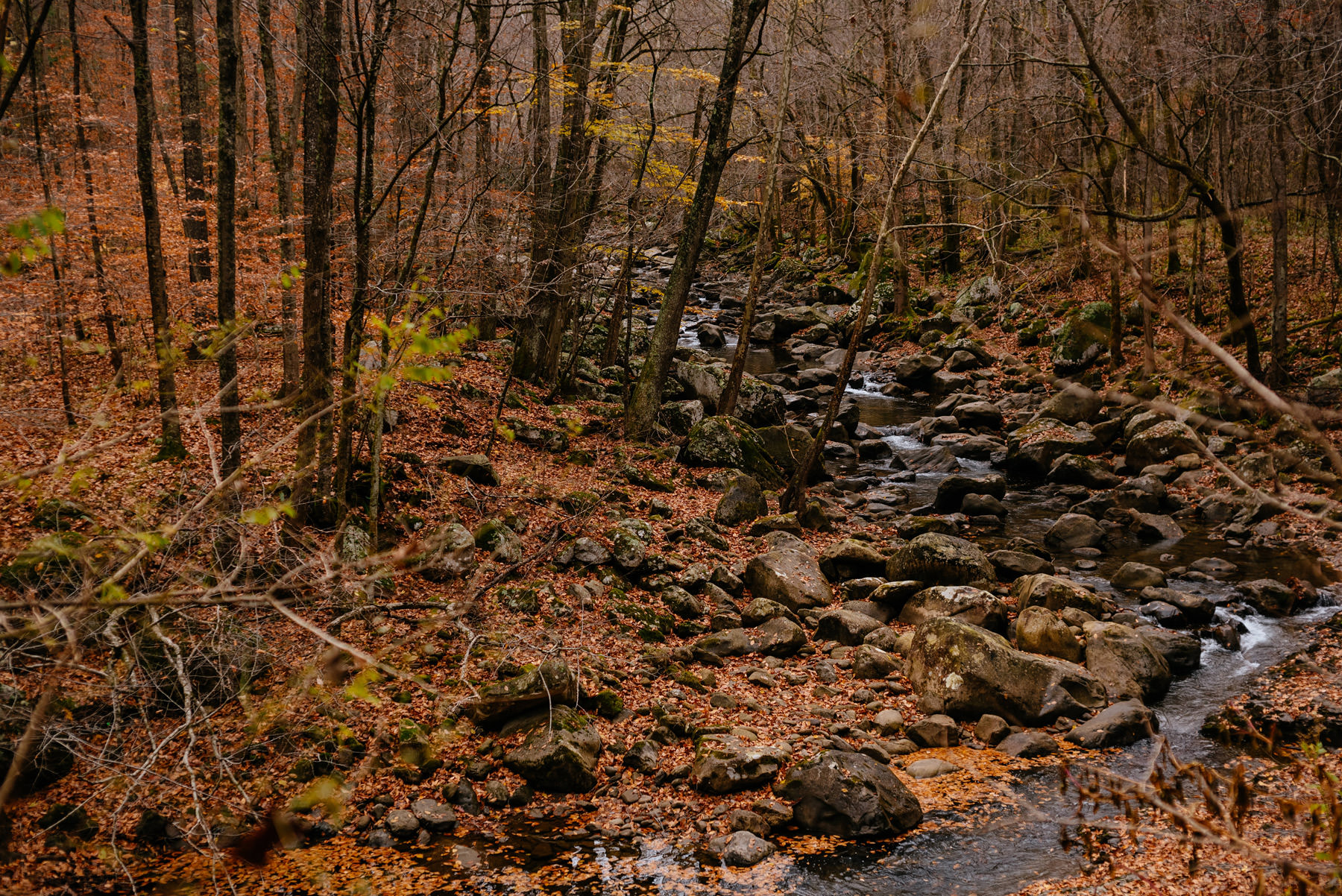 glade creek during fall wv