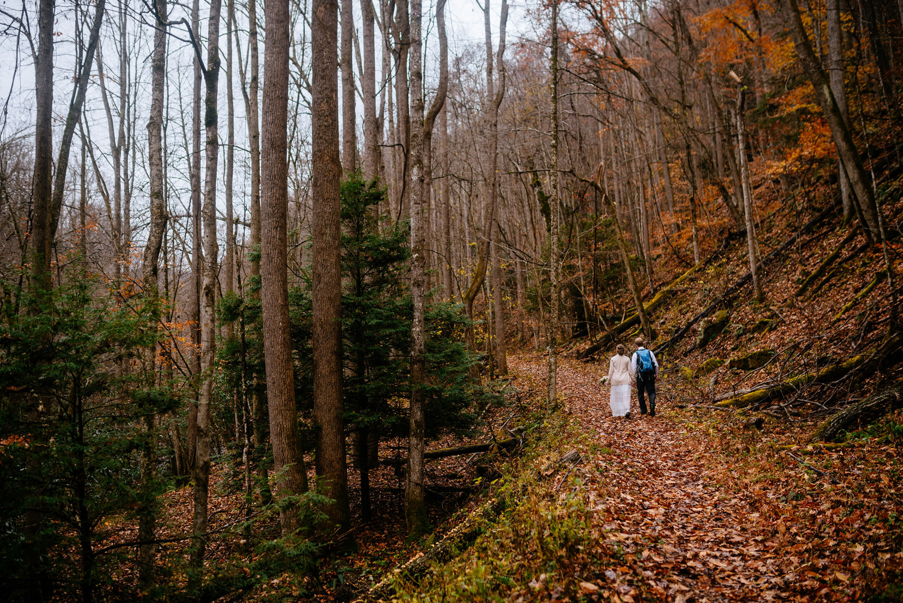 outdoor hiking elopement glade springs wv