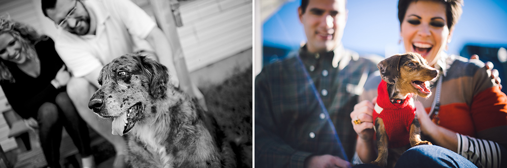 tips for including dogs in your engagement shoot