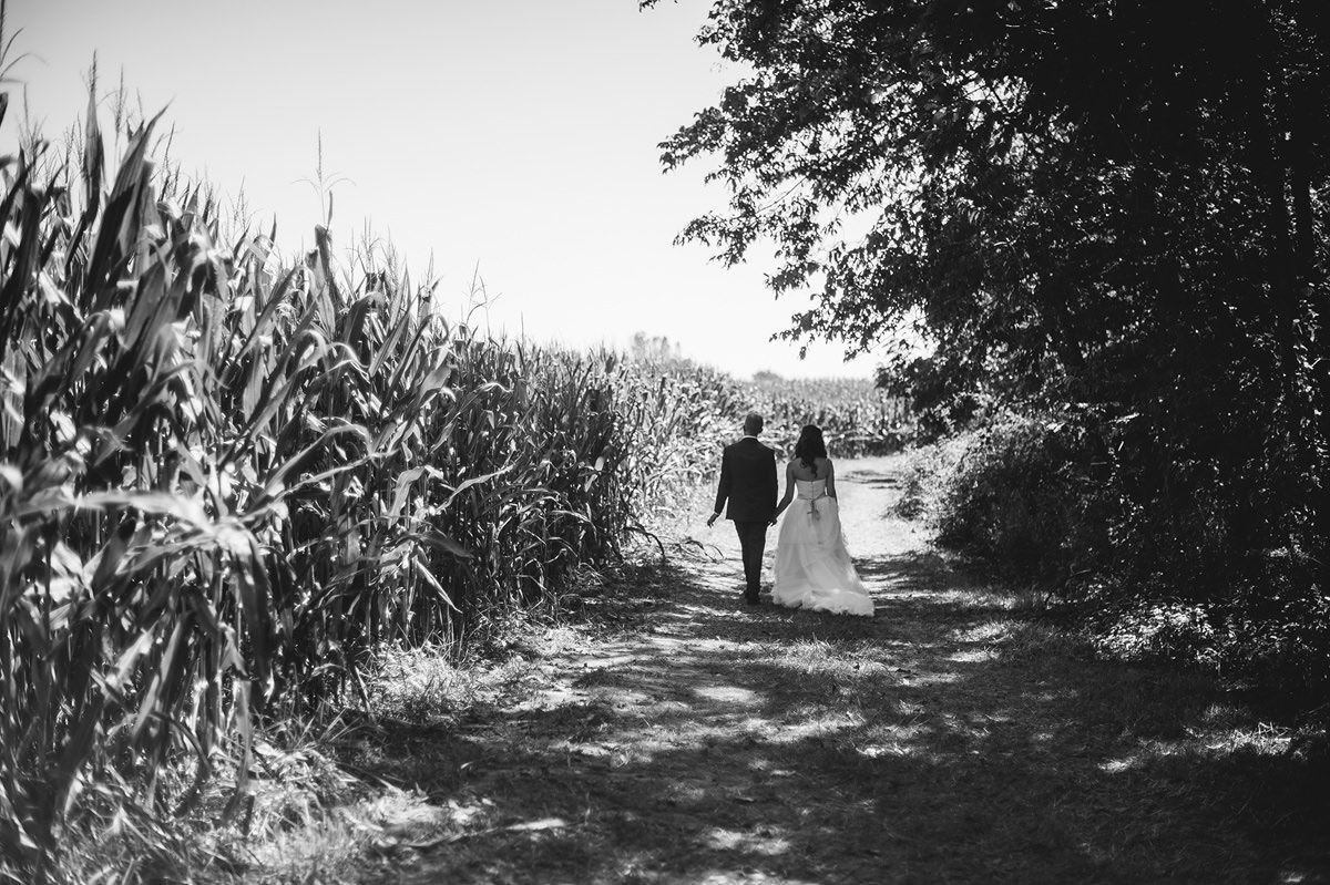 bride and groom walking next to cornfield