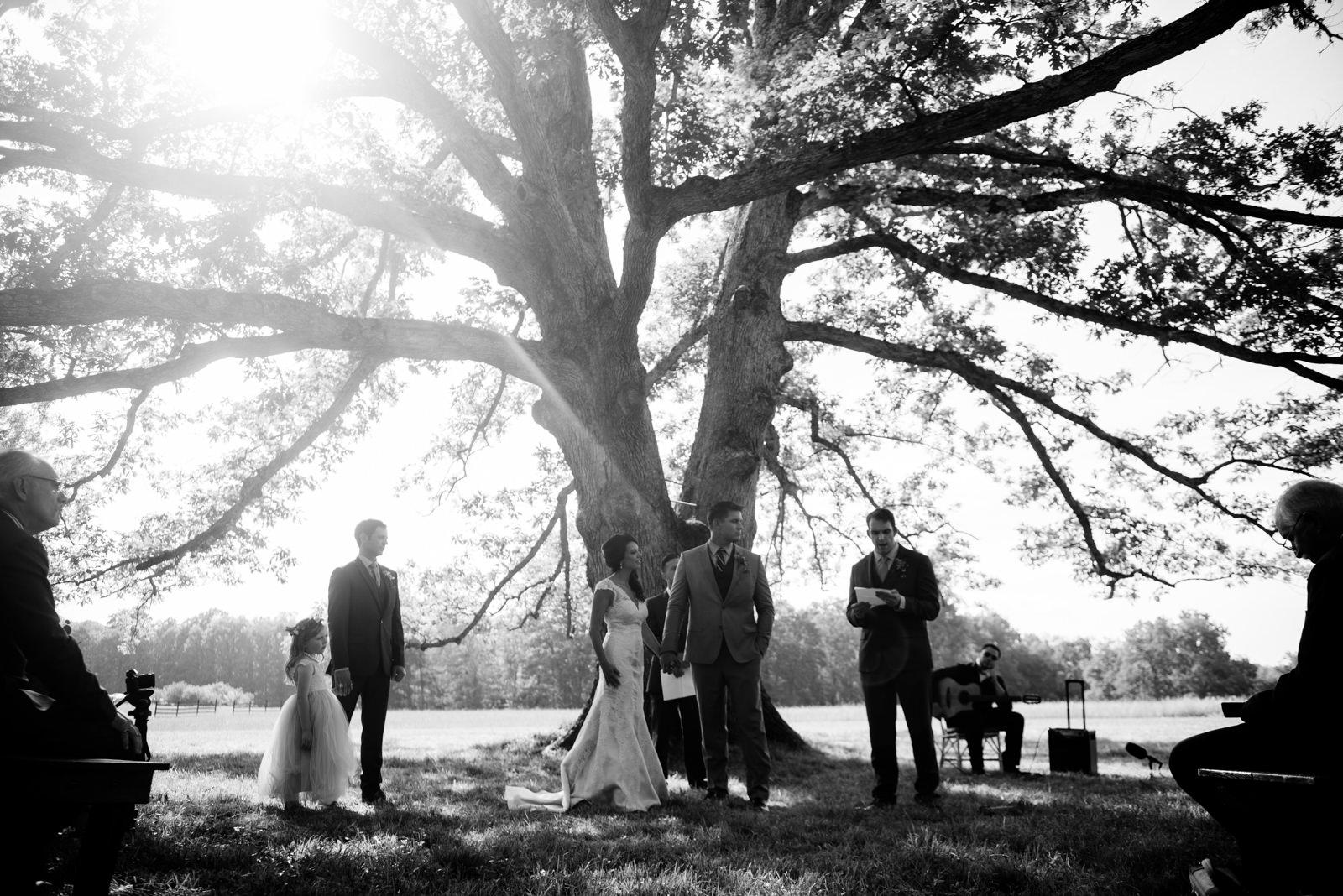 reading during ceremony under white oak tree gaines estate fayetteville wv wedding