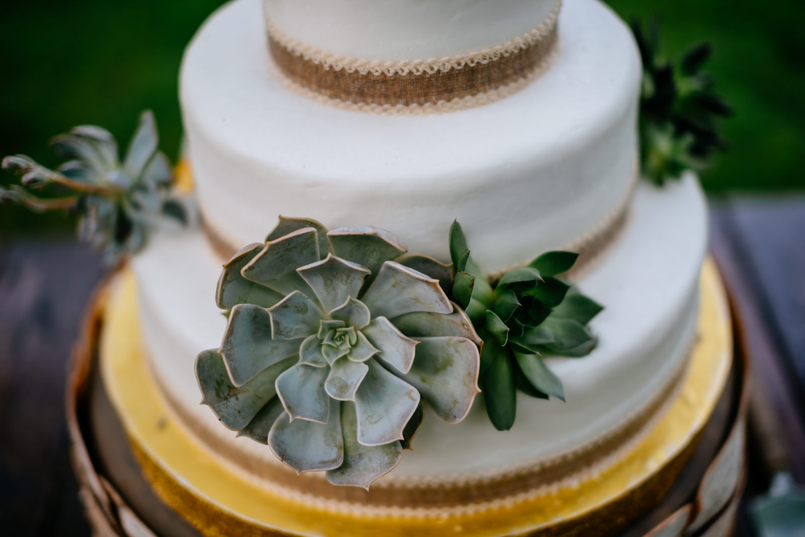 wedding cake with succulents cakes by liza