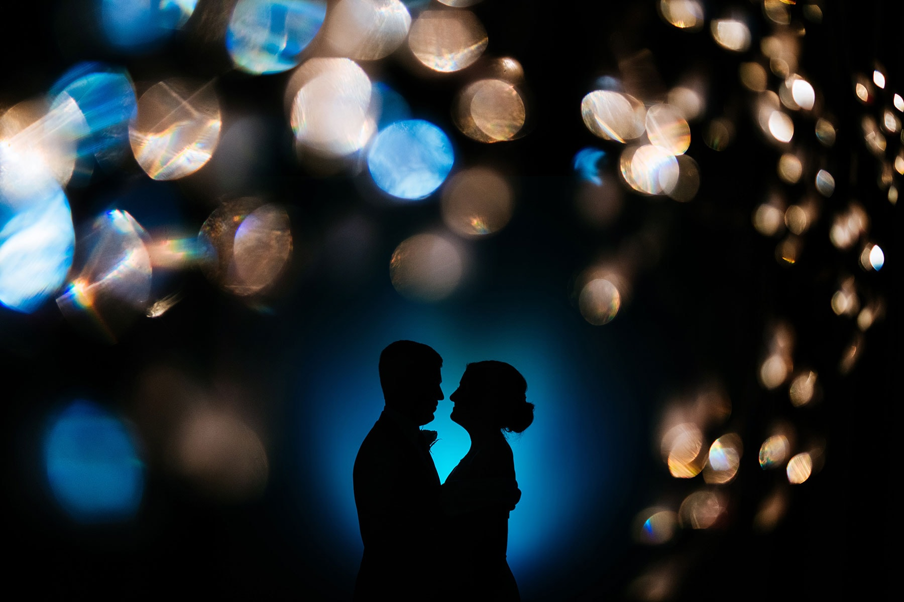 silhouette wedding portrait