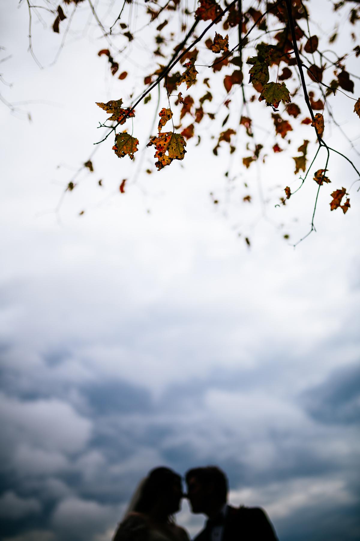 fall foliage in wedding photos